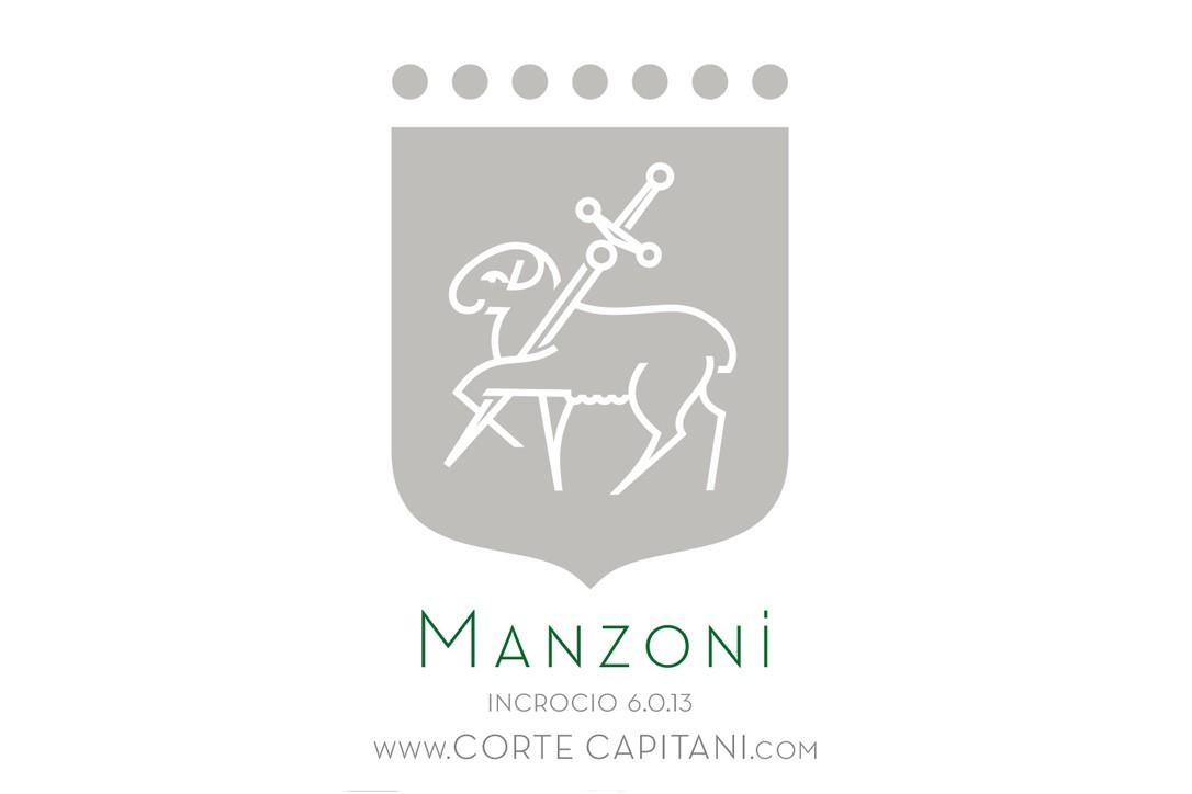 Manzoni - IGT Veneto 2019