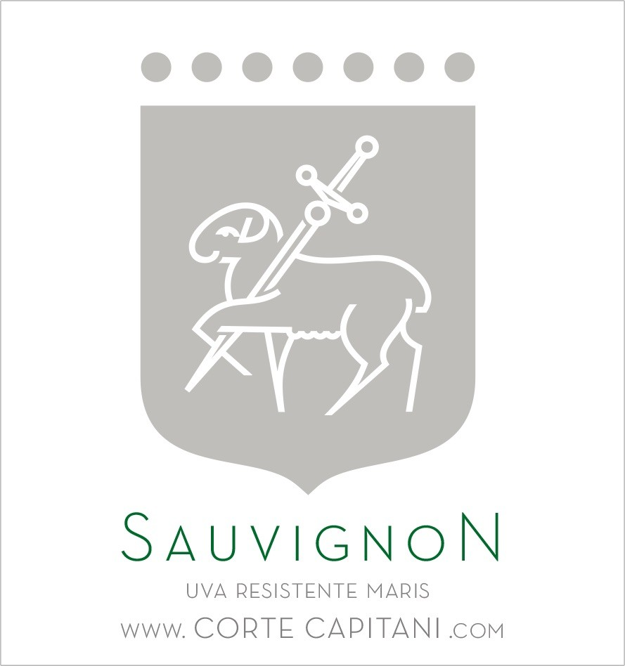 Sauvignon - IGT Veneto 2019